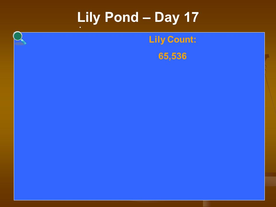 . Lily Pond – Day 17. Lily Count: 65,536