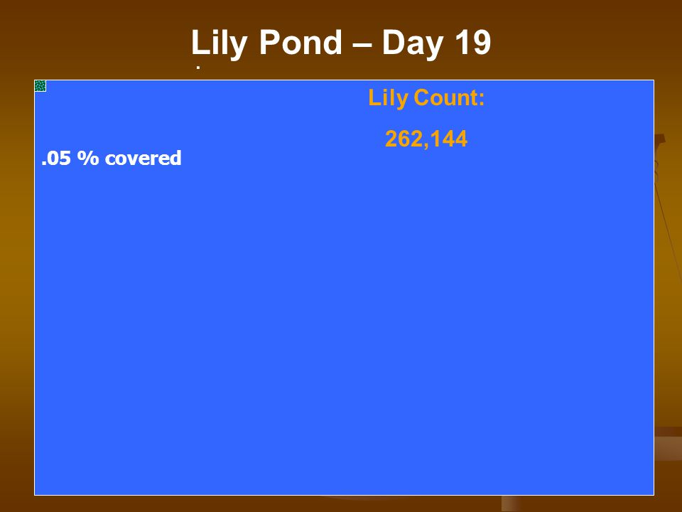 . Lily Pond – Day 19 Lily Count: 262,144.05 % covered
