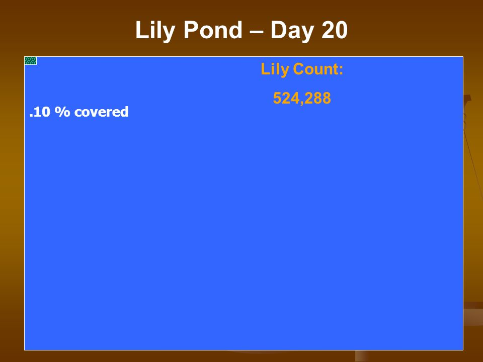 Lily Pond – Day 20 Lily Count: 524,288.10 % covered