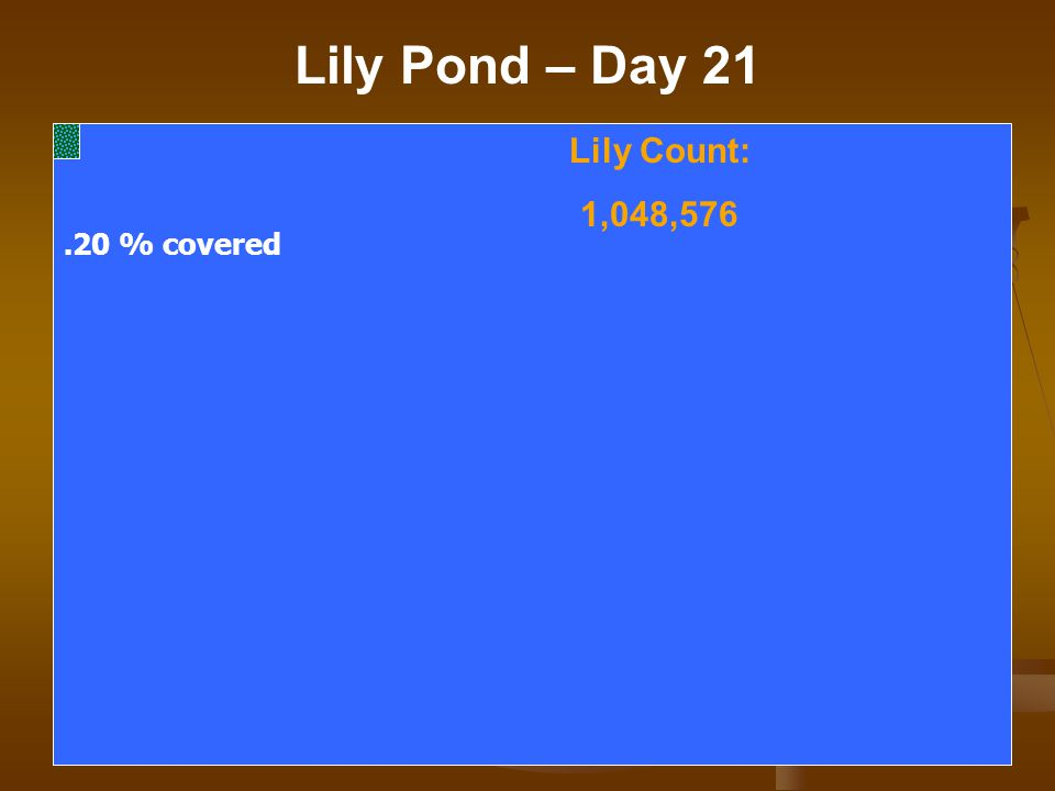 Lily Pond – Day 21 Lily Count: 1,048,576.20 % covered