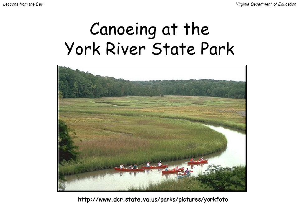 http://www.dcr.state.va.us/parks/pictures/yorkfoto Canoeing at the York River State Park Lessons from the BayVirginia Department of Education