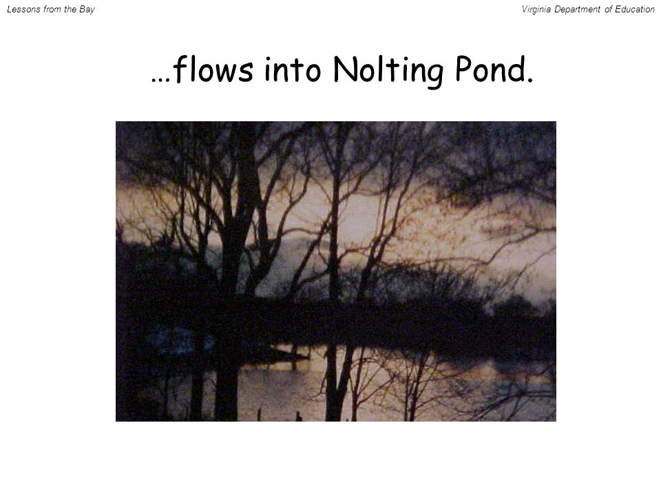 …flows into Nolting Pond. Lessons from the BayVirginia Department of Education