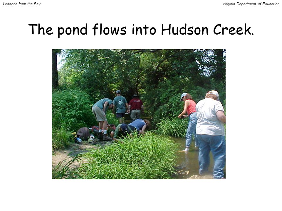 The pond flows into Hudson Creek. Lessons from the BayVirginia Department of Education