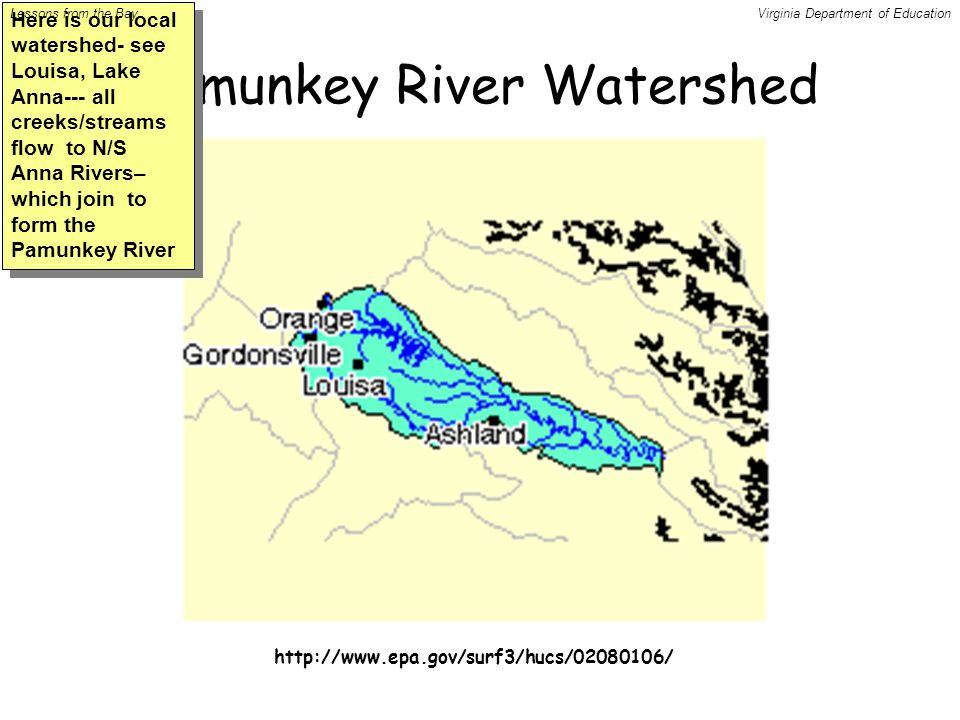 Pamunkey River Watershed http://www.epa.gov/surf3/hucs/02080106/ Here is our local watershed- see Louisa, Lake Anna--- all creeks/streams flow to N/S Anna Rivers– which join to form the Pamunkey River Lessons from the BayVirginia Department of Education