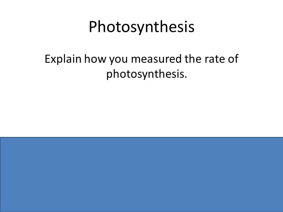 Photosynthesis Explain how you measured the rate of photosynthesis. Counted bubbles (or measure volume) per unit time or use a (datalogging) sensor