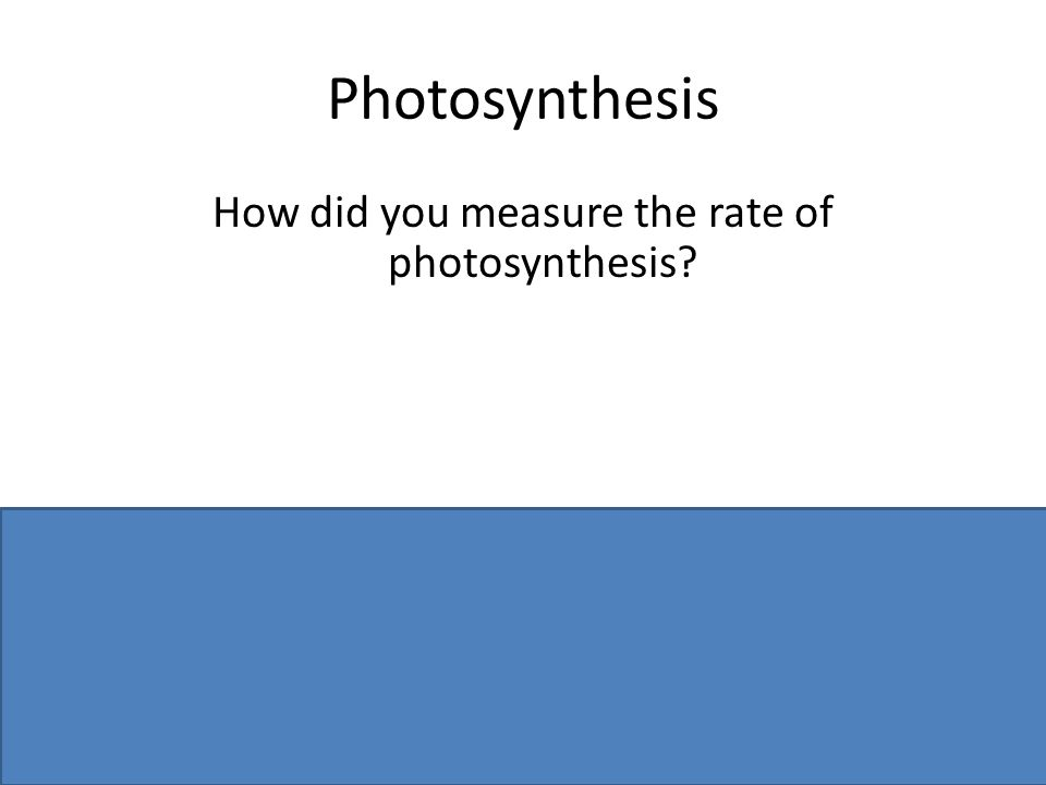 Photosynthesis How did you measure the rate of photosynthesis? bubbles or volume / time OR data logger / sensor named
