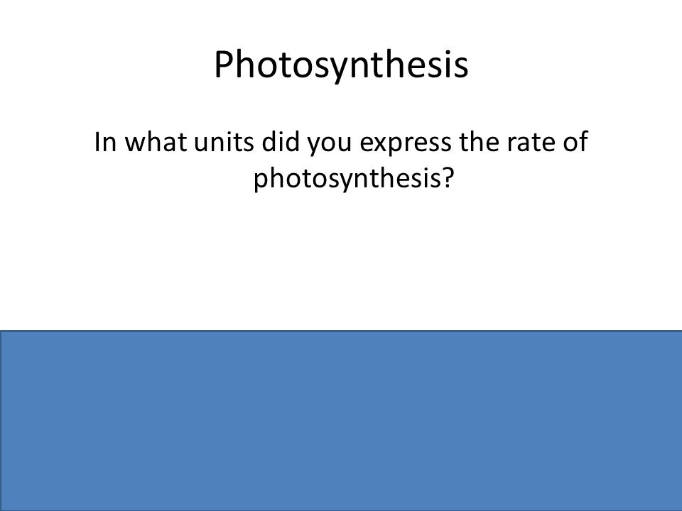 Photosynthesis In what units did you express the rate of photosynthesis? Bubbles of oxygen /per minute