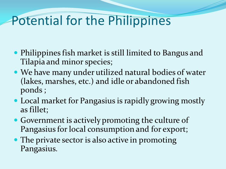 Potential for the Philippines Philippines fish market is still limited to Bangus and Tilapia and minor species; We have many under utilized natural bo
