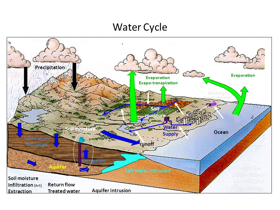 Water Cycle Ocean Evaporation Evapo-transpiration runoff Water Supply Discharge treated water Salt Water Intrusion Aquifer Infiltration Recharge Evapo