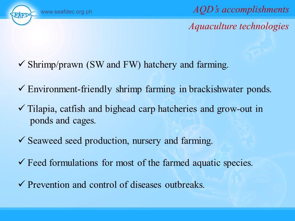 AQD's accomplishments Shrimp/prawn (SW and FW) hatchery and farming.