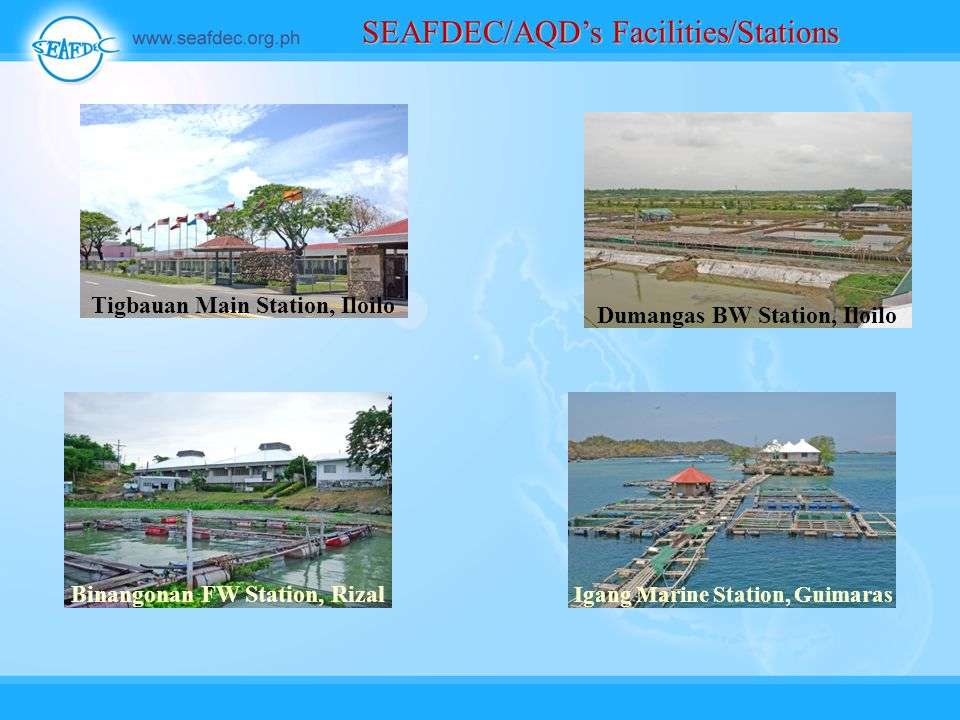 SEAFDEC/AQD's Facilities/Stations Tigbauan Main Station, Iloilo Dumangas BW Station, Iloilo Binangonan FW Station, Rizal Igang Marine Station, Guimaras