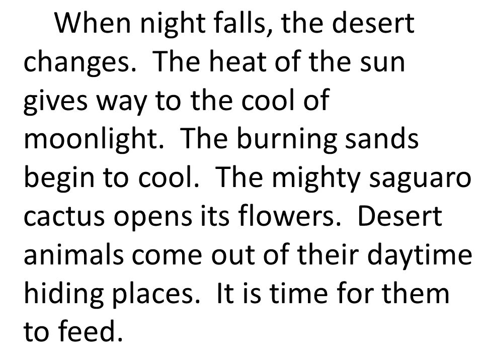 When night falls, the desert changes. The heat of the sun gives way to the cool of moonlight.