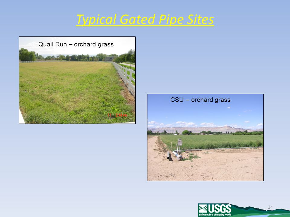 24 Typical Gated Pipe Sites CSU – orchard grass Quail Run – orchard grass
