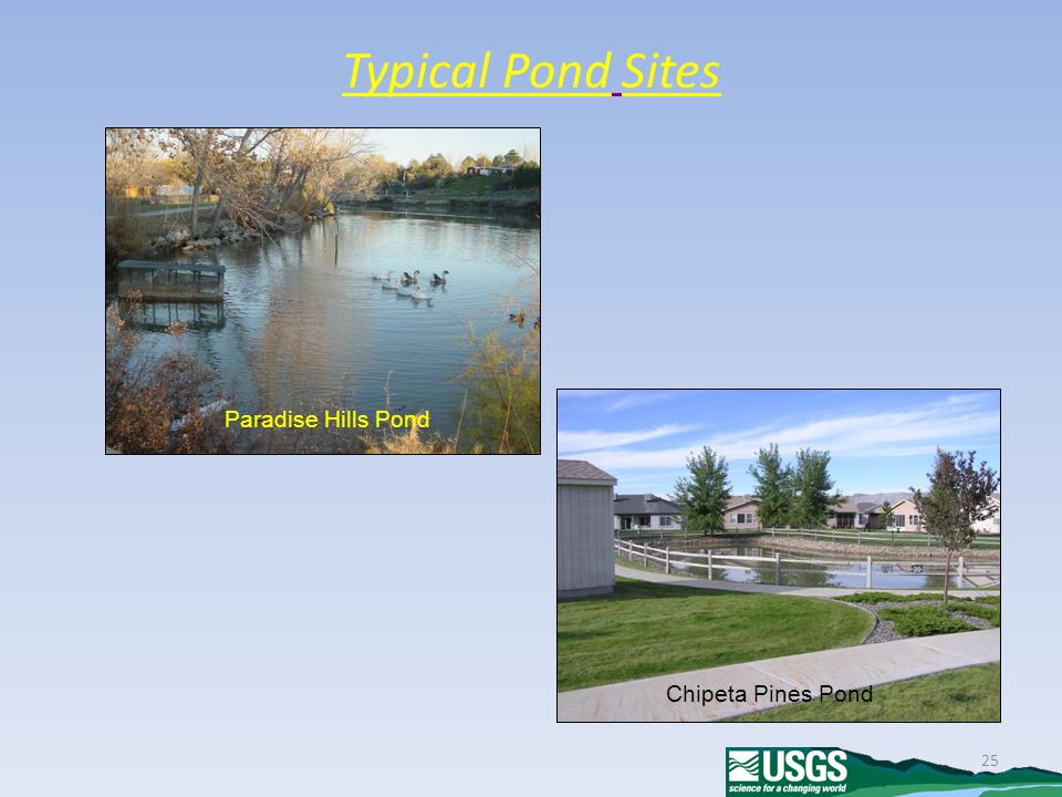 25 Typical Pond Sites Paradise Hills Pond Chipeta Pines Pond