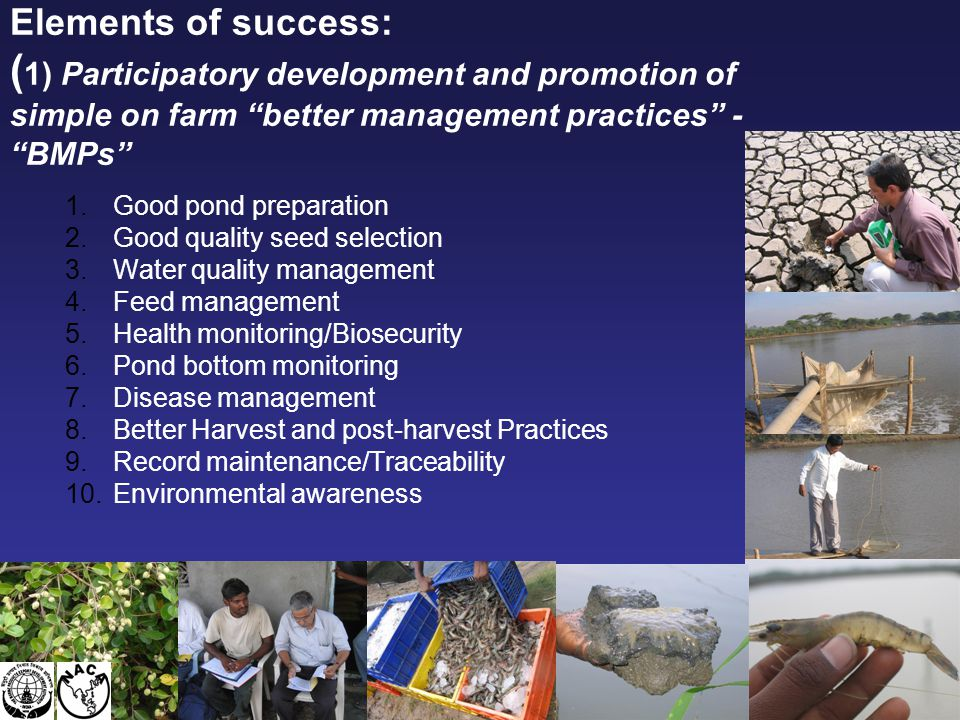 Farming system - extensive farming system – Avg. Production: 250 kg/ha/crop Alternate cropping – shrimp, rice, other crops Farm areas < 2ha, and one-t