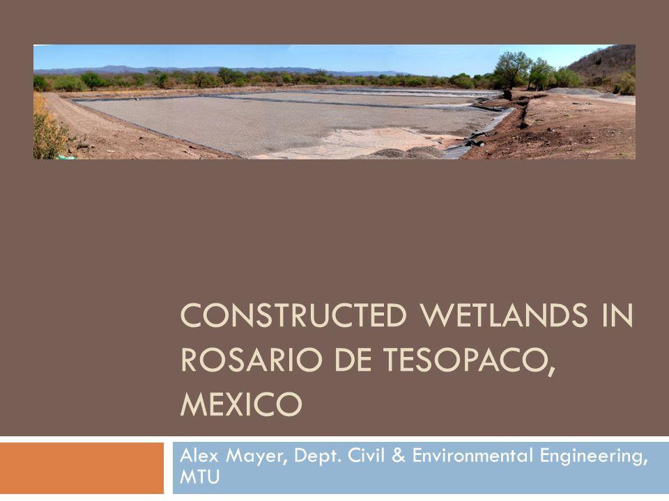 CONSTRUCTED WETLANDS IN ROSARIO DE TESOPACO, MEXICO Alex Mayer, Dept. Civil & Environmental Engineering, MTU
