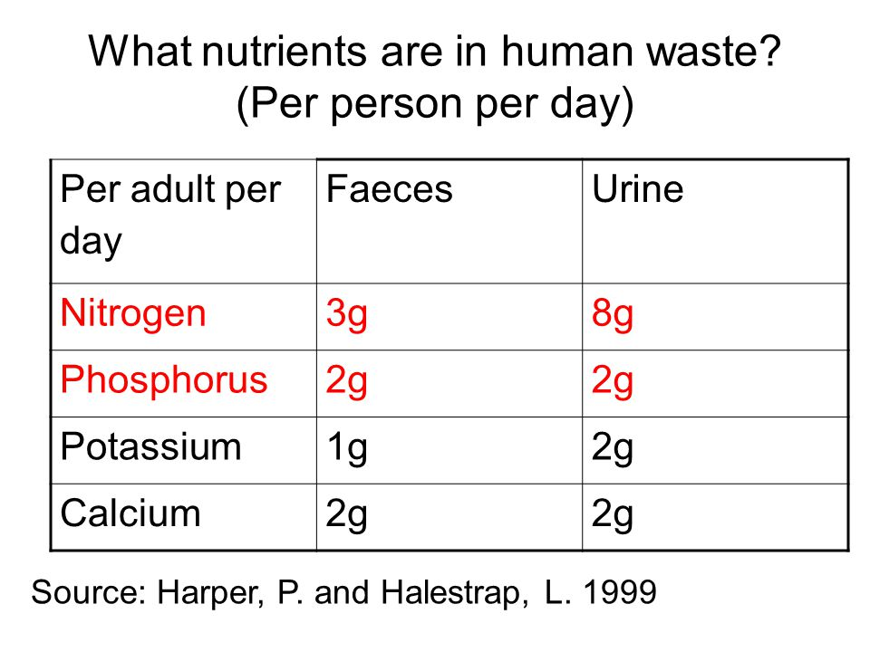 What nutrients are in human waste. (Per person per day) Source: Harper, P.
