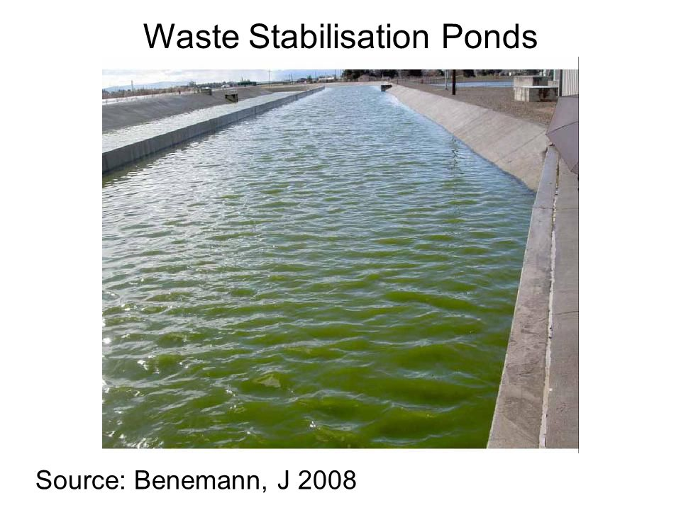 Source: Benemann, J 2008 Waste Stabilisation Ponds