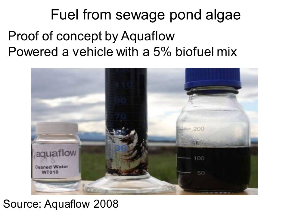 Source: Aquaflow 2008 Fuel from sewage pond algae Proof of concept by Aquaflow Powered a vehicle with a 5% biofuel mix