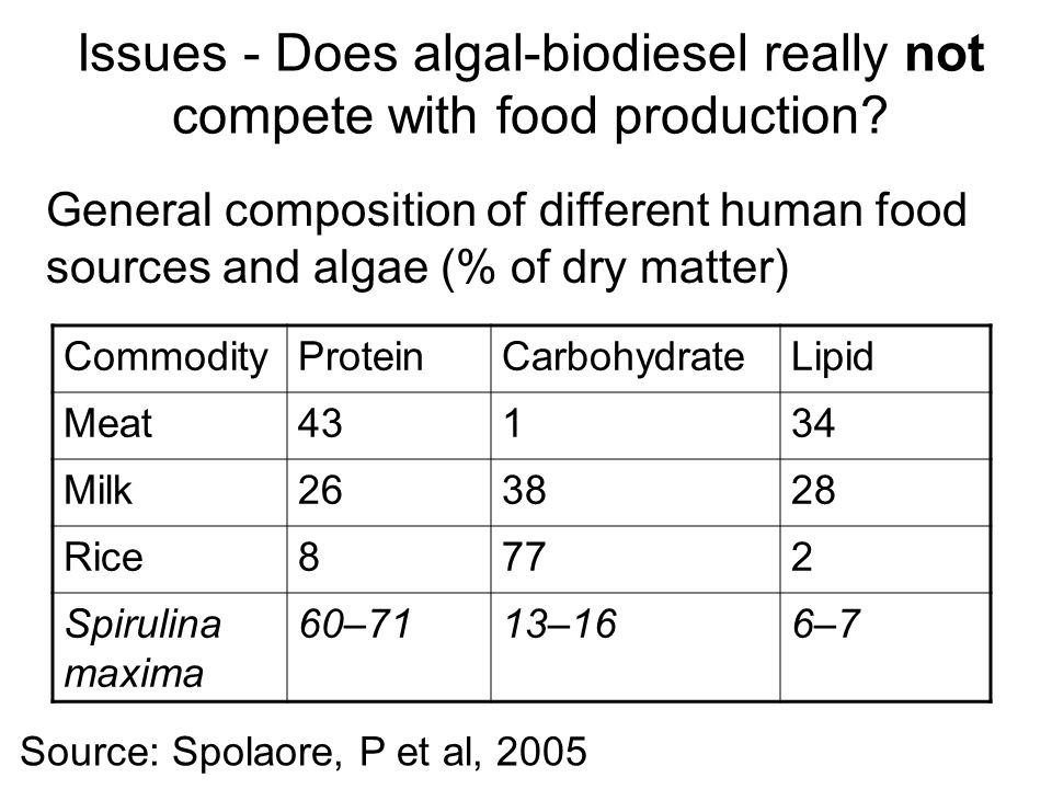 Source: Spolaore, P et al, 2005 Issues - Does algal-biodiesel really not compete with food production.