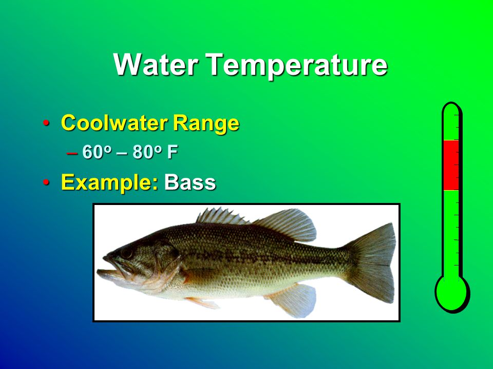 Water Temperature Coolwater RangeCoolwater Range –60 o – 80 o F Example: BassExample: Bass