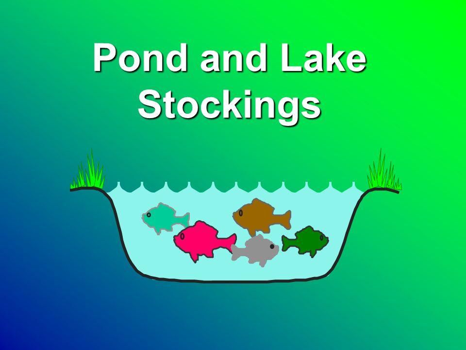 Pond and Lake Stockings