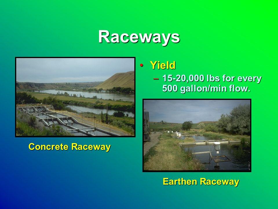 Raceways YieldYield –15-20,000 lbs for every 500 gallon/min flow. Earthen Raceway Concrete Raceway