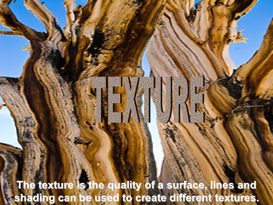 The texture is the quality of a surface, lines and shading can be used to create different textures.