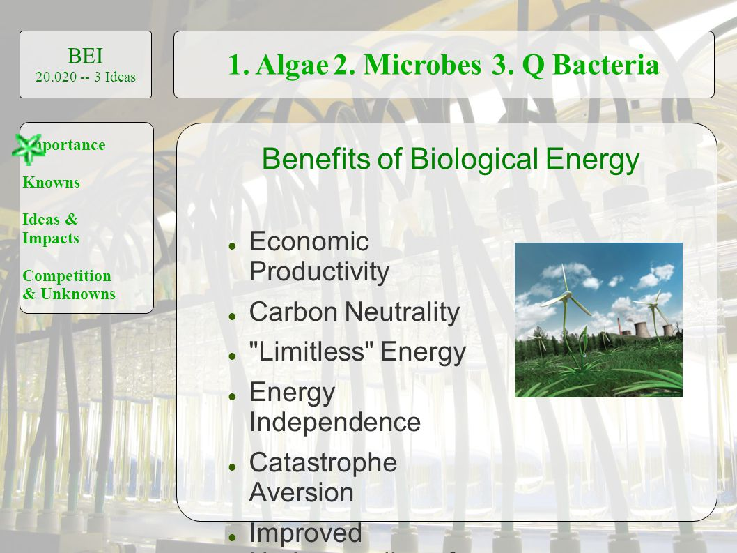 1. Algae2. Microbes3. Q Bacteria BEI 20.020 -- 3 Ideas Importance Knowns Ideas & Impacts Competition & Unknowns Economic Productivity Carbon Neutralit
