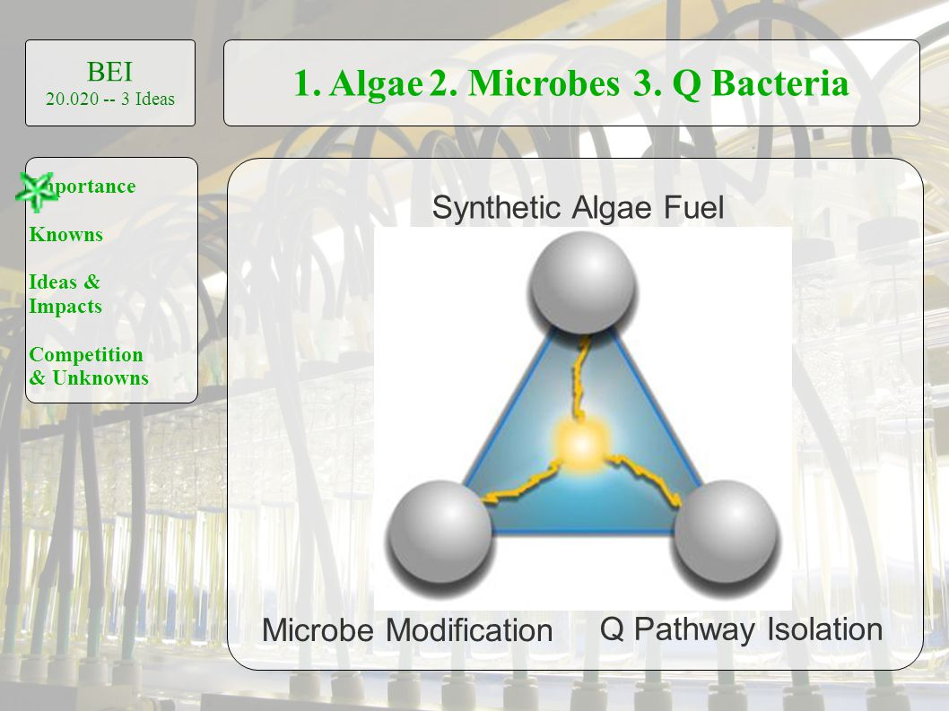 1. Algae2. Microbes3. Q Bacteria BEI 20.020 -- 3 Ideas Importance Knowns Ideas & Impacts Competition & Unknowns Synthetic Algae Fuel Microbe Modificat