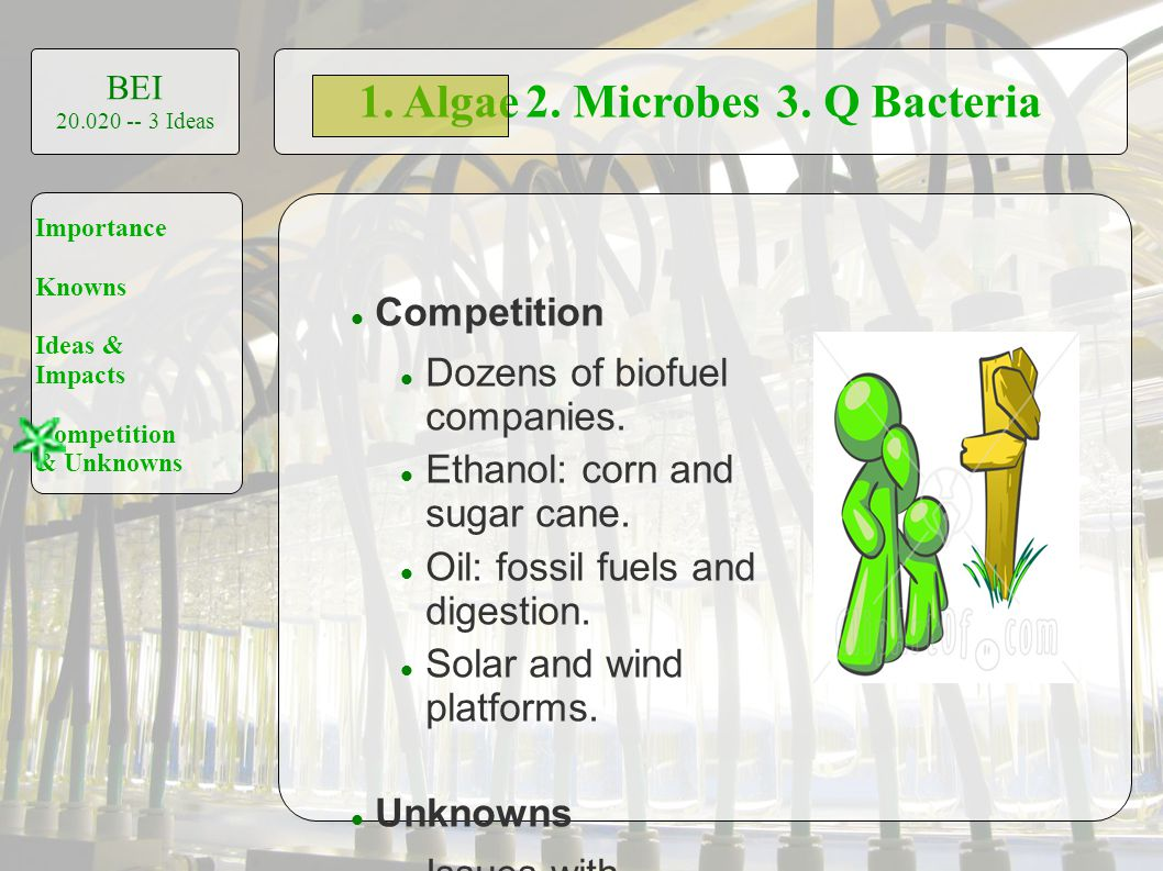1. Algae2. Microbes3. Q Bacteria BEI 20.020 -- 3 Ideas Importance Knowns Ideas & Impacts Competition & Unknowns Competition Dozens of biofuel companie