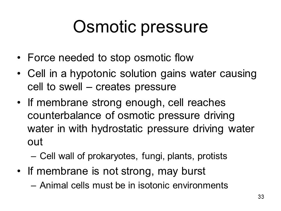 Osmotic pressure Force needed to stop osmotic flow Cell in a hypotonic solution gains water causing cell to swell – creates pressure If membrane stron