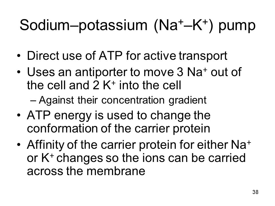 38 Sodium–potassium (Na + –K + ) pump Direct use of ATP for active transport Uses an antiporter to move 3 Na + out of the cell and 2 K + into the cell