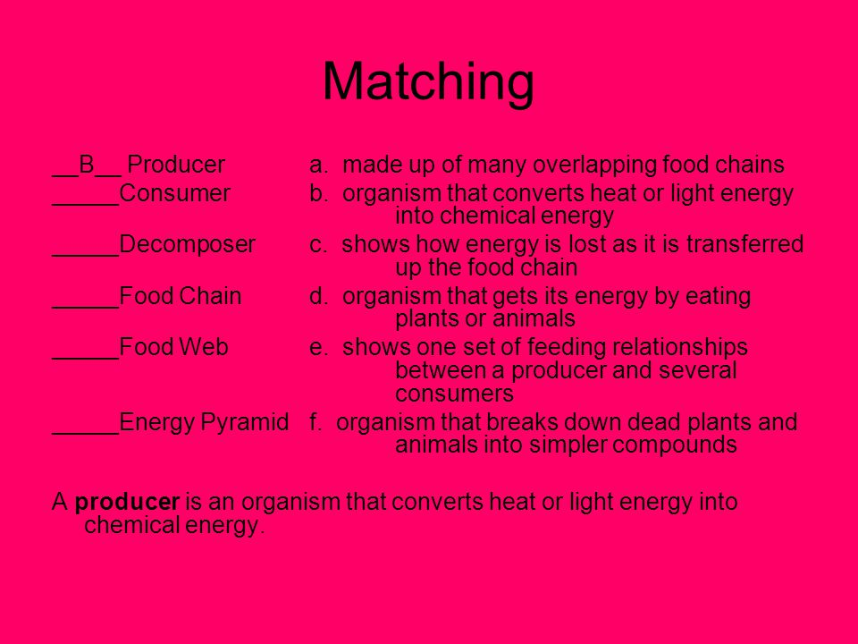 Matching __B__ Producera.made up of many overlapping food chains _____Consumerb.