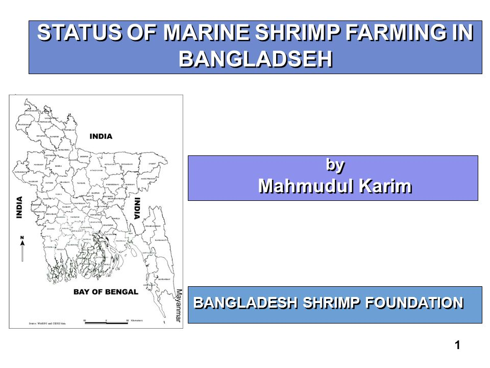 1 STATUS OF MARINE SHRIMP FARMING IN BANGLADSEH BANGLADESH SHRIMP FOUNDATION by Mahmudul Karim by Mahmudul Karim