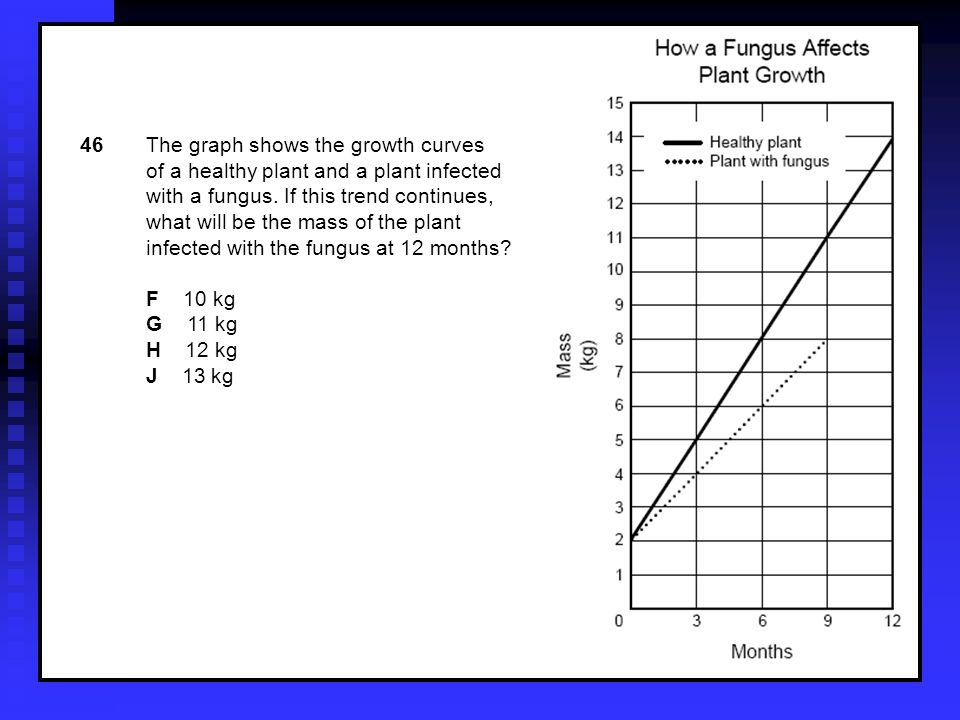 46The graph shows the growth curves of a healthy plant and a plant infected with a fungus.