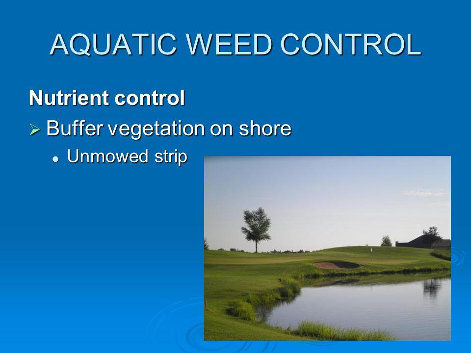 AQUATIC WEED CONTROL Nutrient control  Buffer vegetation on shore Unmowed strip Unmowed strip