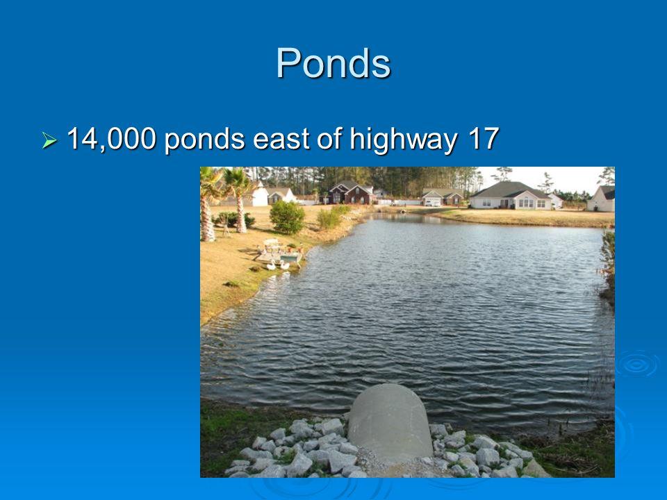 Ponds  14,000 ponds east of highway 17