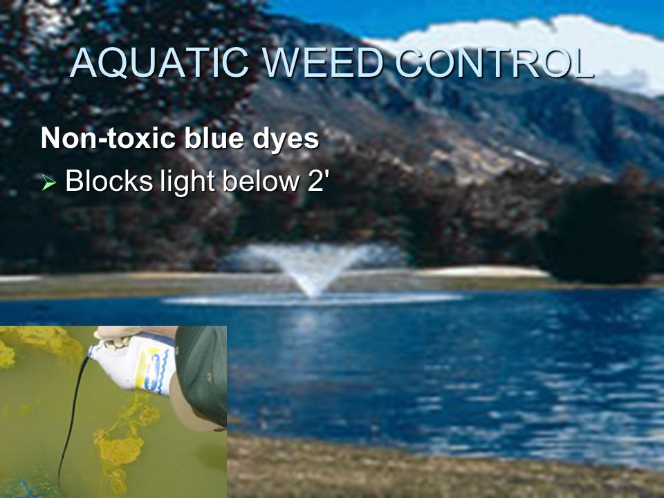 AQUATIC WEED CONTROL Non-toxic blue dyes  Blocks light below 2