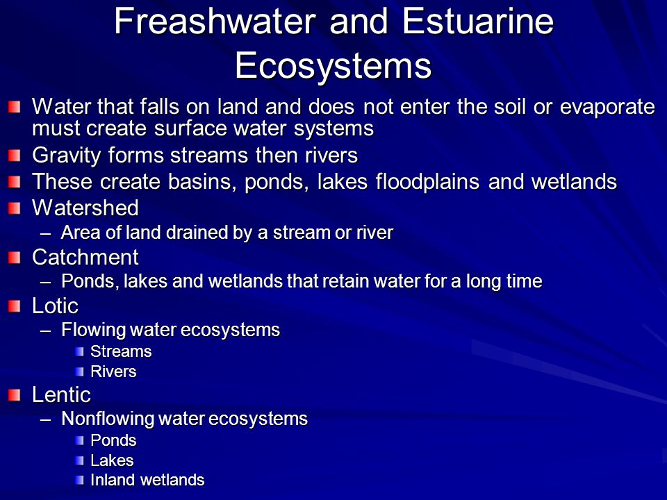 Freashwater and Estuarine Ecosystems Water that falls on land and does not enter the soil or evaporate must create surface water systems Gravity forms
