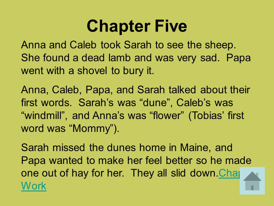 Questions – Ch.8 Why were Lily and Caleb worried when Sarah wanted to drive to town alone.