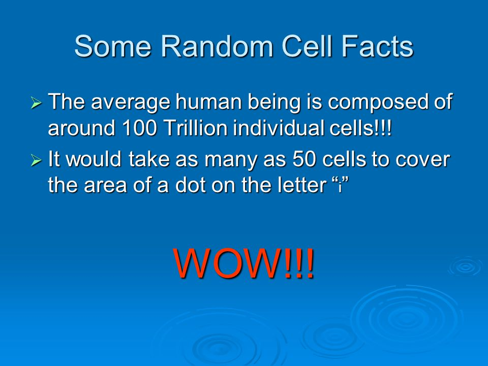 Some Random Cell Facts  The average human being is composed of around 100 Trillion individual cells!!.