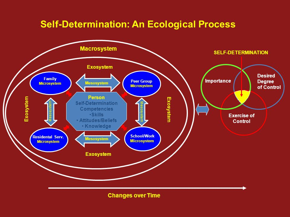 Exercise of Control Desired Degree of Control Importance SELF-DETERMINATION Changes over Time Self-Determination: An Ecological Process Person Self-De