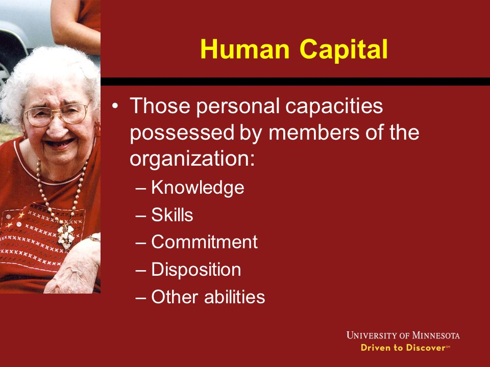 Human Capital Those personal capacities possessed by members of the organization: –Knowledge –Skills –Commitment –Disposition –Other abilities