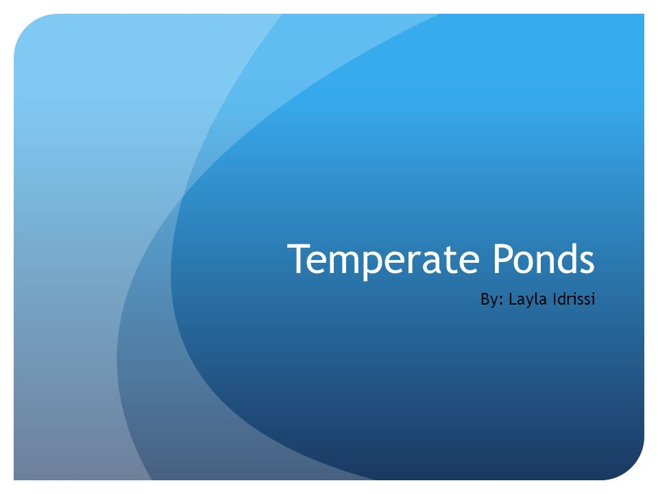 Temperate Ponds By: Layla Idrissi