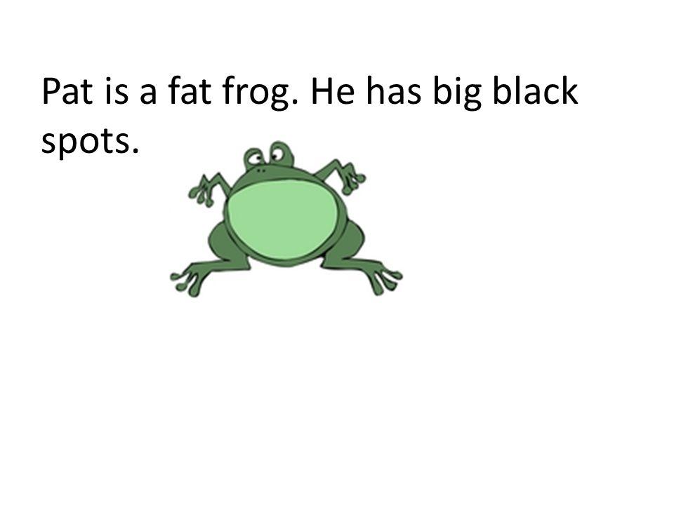 Pat is a fat frog. He has big black spots.