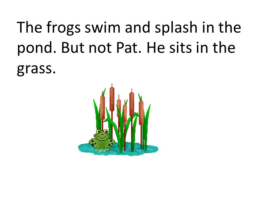 The frogs swim and splash in the pond. But not Pat. He sits in the grass.
