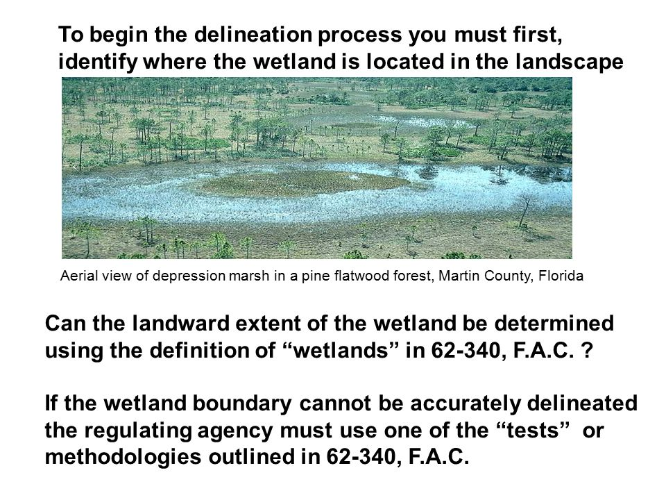 To begin the delineation process you must first, identify where the wetland is located in the landscape Can the landward extent of the wetland be dete
