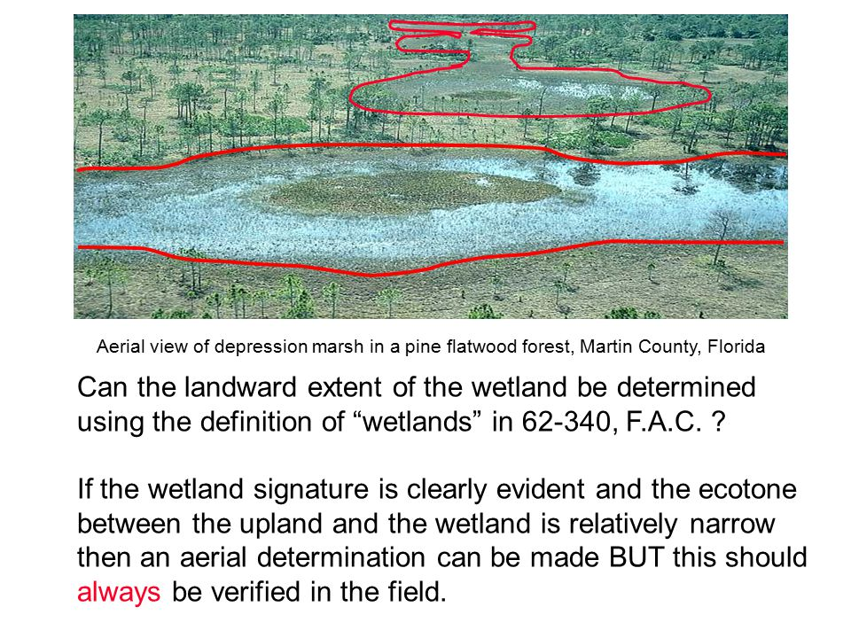 "Can the landward extent of the wetland be determined using the definition of ""wetlands"" in 62-340, F.A.C. ? If the wetland signature is clearly eviden"