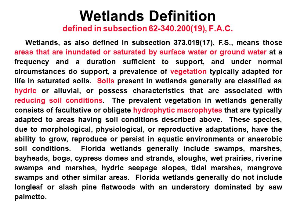Wetlands Definition defined in subsection 62-340.200(19), F.A.C. Wetlands, as also defined in subsection 373.019(17), F.S., means those areas that are